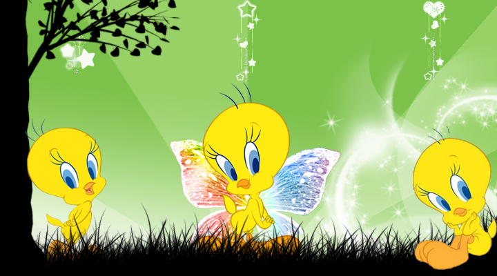 Tweety wallpaper Samsung Star by Eowalin