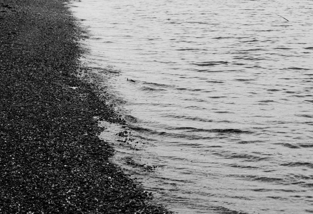 Four Sixths Water by ElliaTamachi