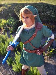 Link- Twilight Princess by Faxen