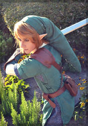 Defender of Hyrule by Faxen
