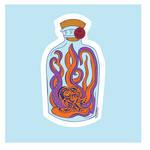 Bottle Octopus