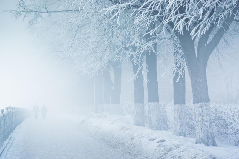 Thick fog by dSavin