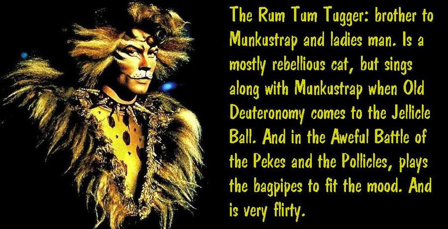 The Rum Tum Tugger By Avatarfruitsbasket On Deviantart
