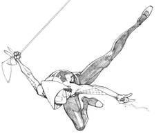 Spider Gwen by Max-Dunbar