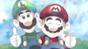 Mario and Luigi: Smile for the Camera