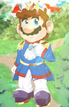 Mario: Prince Mario
