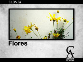Lluvia - Flores by daidaros