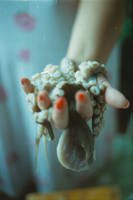 hold the octopus' heart by granula