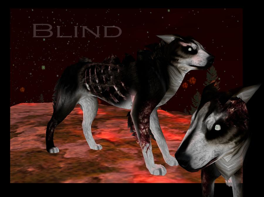 Crearé un nuevo Wolf's Rain con mis personajes de FH Blind_preset_by_rikuko-d45h8y2