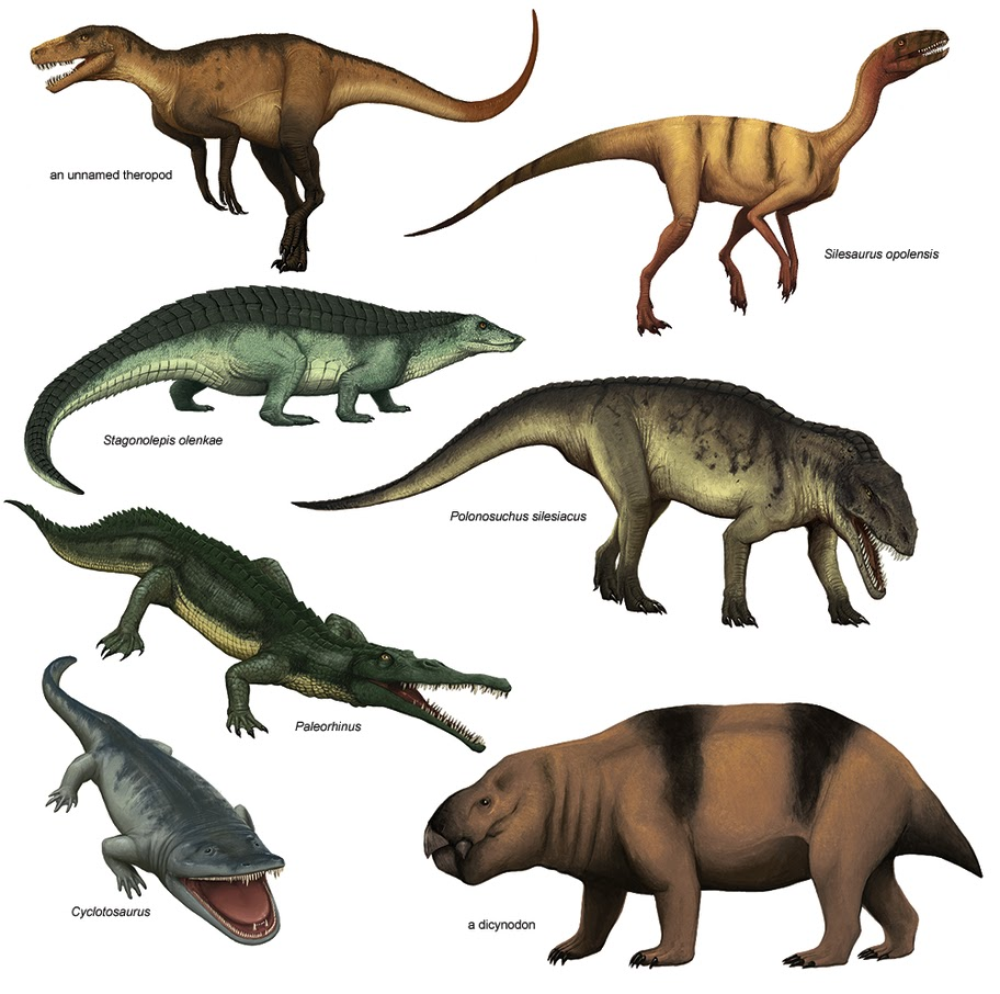 Triassic Dinosaurs List | www.galleryhip.com - The Hippest Pics 10 Examples Of Reptiles