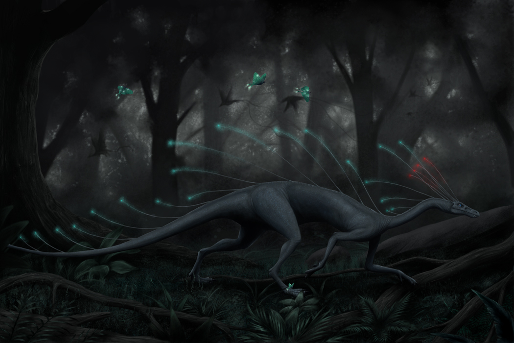 through the forest by Apsaravis