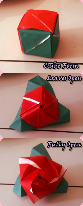 how to make a paper rose cube