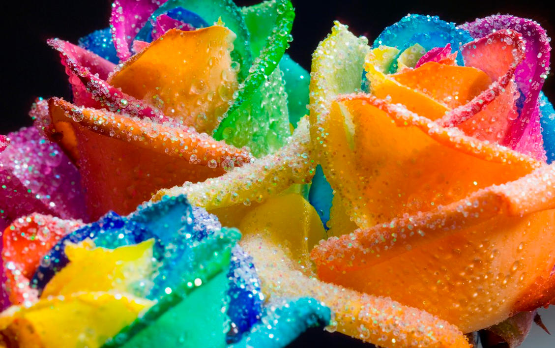 Happy roses rainbow glitter by rainbowedroses on deviantart for Colorful roses images