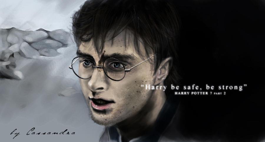 Harry Potter part 1 of 2 by secretSWC