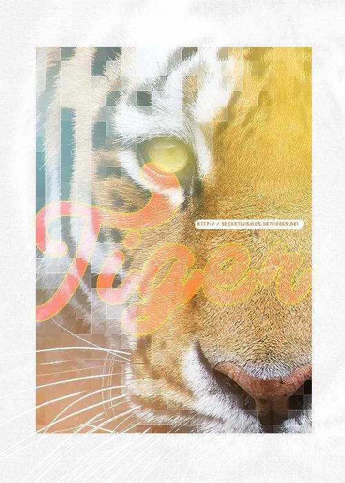 Tiger-swc by secretSWC