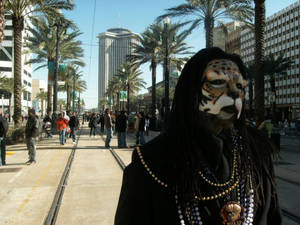 Canal Street, New Orleans, Mardi Gras 2010