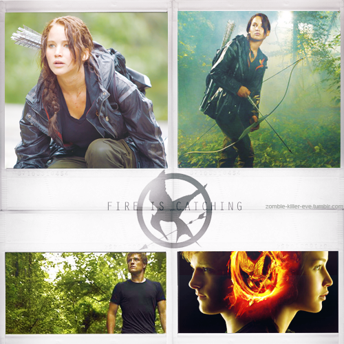 Live, Love, Laugh~ Evey's Gallery The_hunger_games_by_halfdemonbitch-d4tdt4x