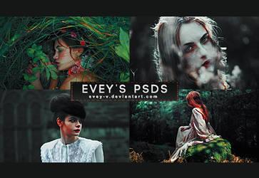 PSD #317 - Black Sea by Evey-V