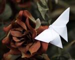 Paper World - Resting