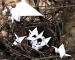 Paper World - Hatchlings
