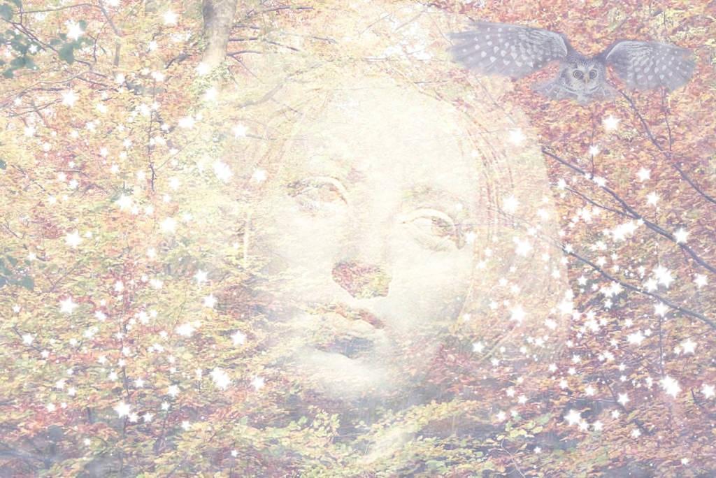 Autumn Equinox 2013 by rainbowgryphon