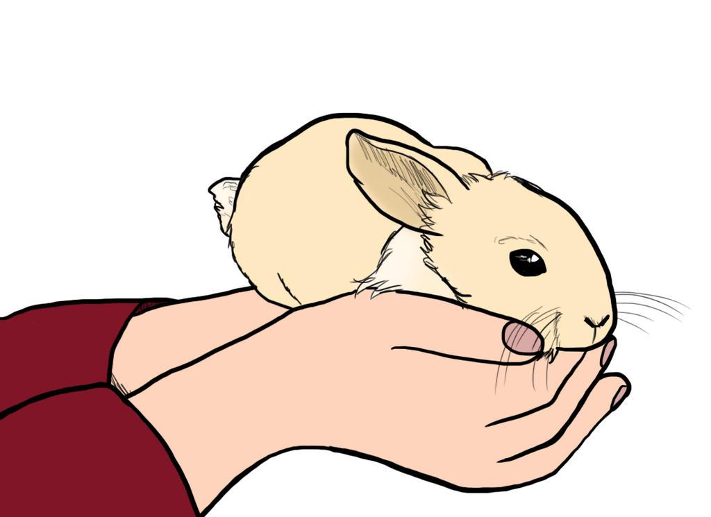 Nemy Bunny by IamaCutie