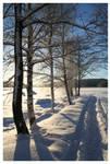 Winter Walk 2011