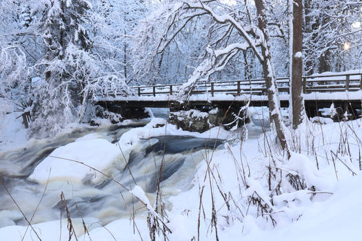 Winter by the mill