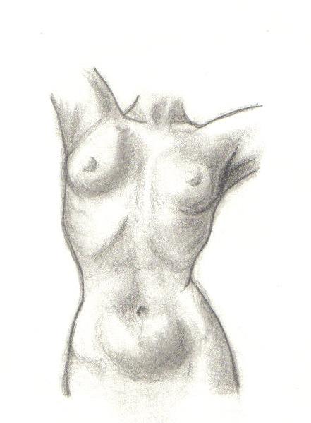 Womens Body By Tigerchat On Deviantart