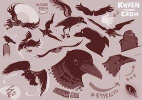 ravens by ameoname