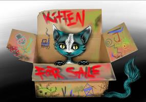 Kitten For Sale by BuntschwarzSue