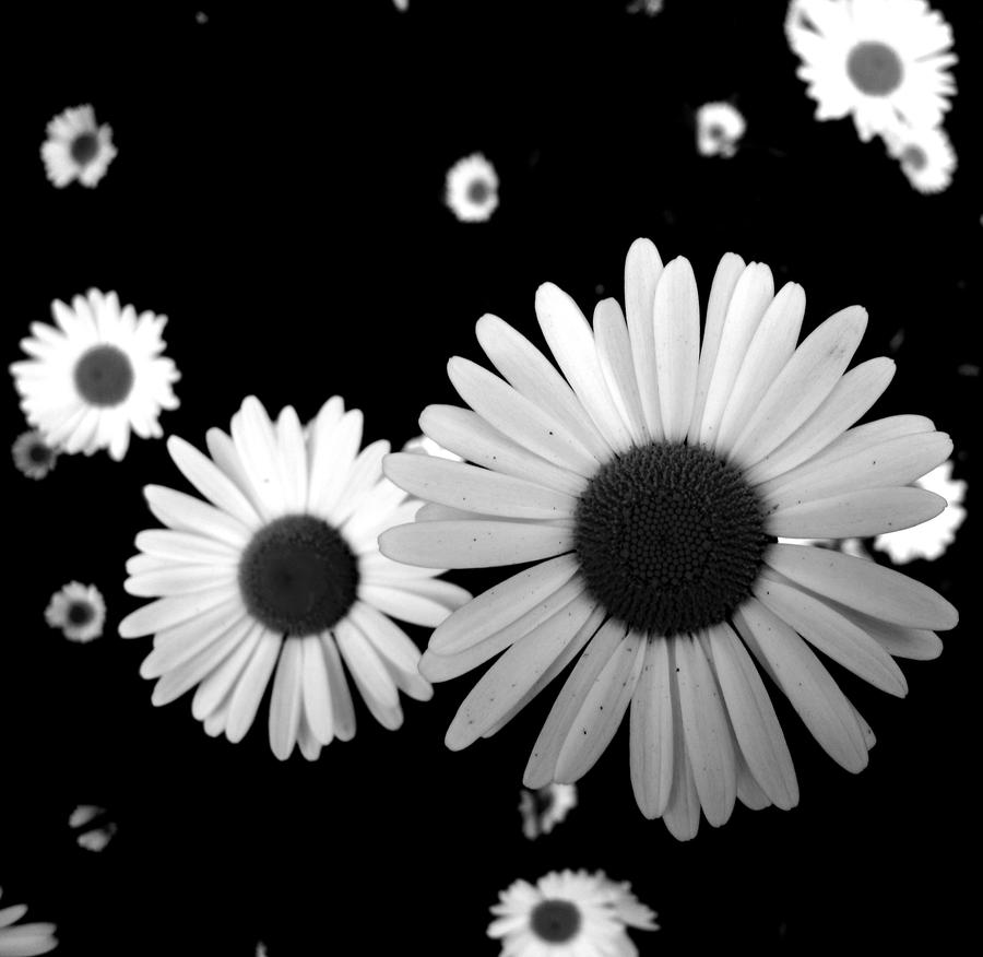 Spaceflowers by Ronja-poni