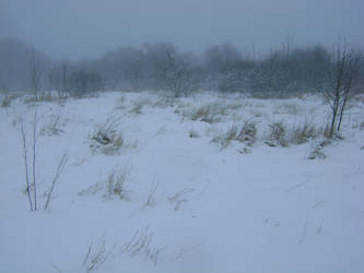 snowy fields -fog- 77 by dark-dragon-stock