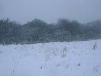 snowy fields -fog- 83 by dark-dragon-stock