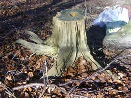 tree stump stock 1