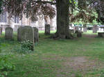 graveyard stock 2