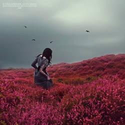 Lost In Paradise by FallanDark