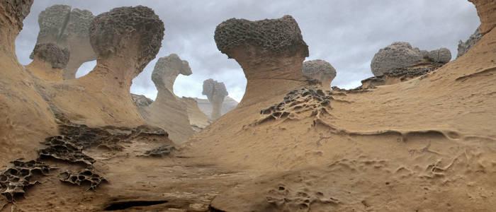 The Desolated Sand