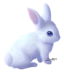 Commission - Fluffy Bunny