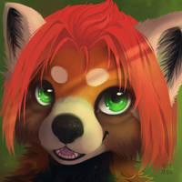 Commission - Aeoron [+video!]