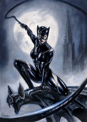 Catwoman (Commission painting) by sebastien-grenier
