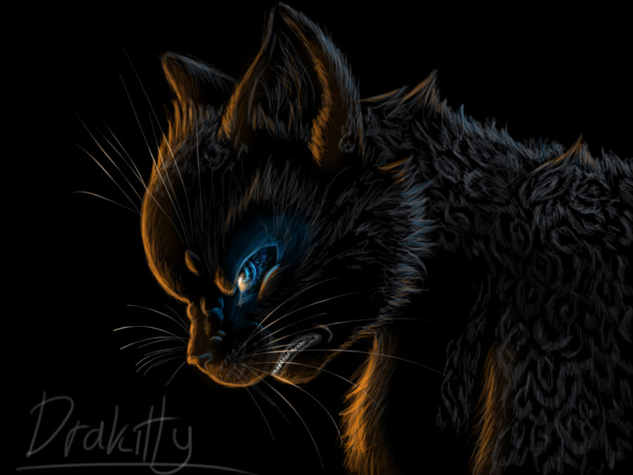 Ashfur by DraKitty
