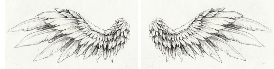 Wing tattoo by kittencaboodles on deviantart wing tattoo by kittencaboodles urmus Gallery
