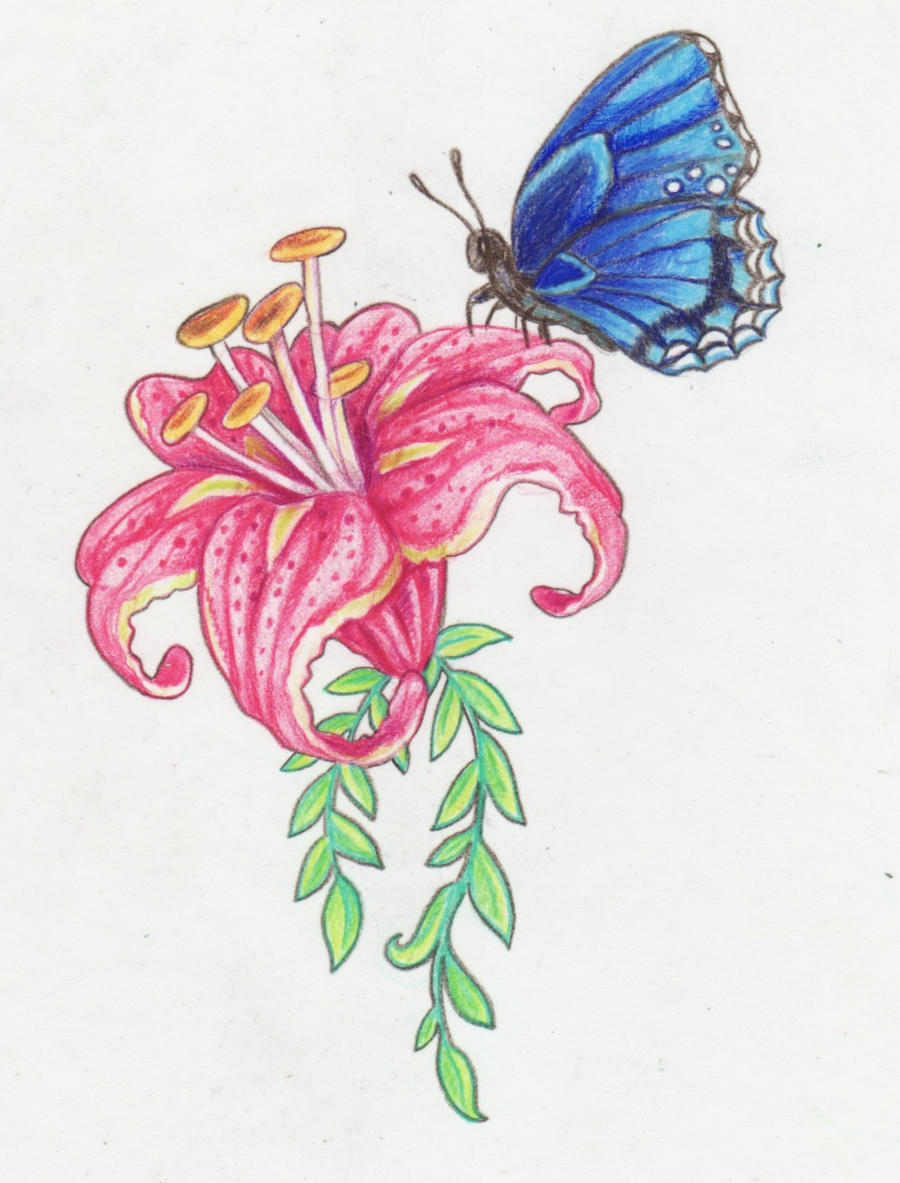 Flower And Butterfly Design By Kittencaboodles On Deviantart