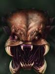 Predator portrait colored