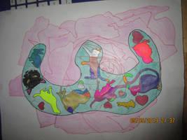 Fun Draw Sketch Colored