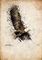 Golden Eagle by Rachides