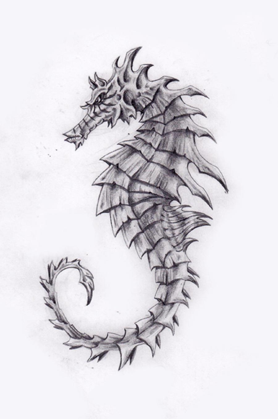 Seahorse by roerjm on DeviantArt