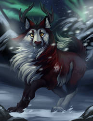 .: Crowned Winter :.