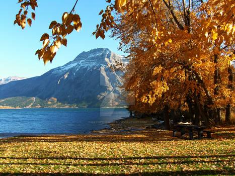 Fall In Waterton